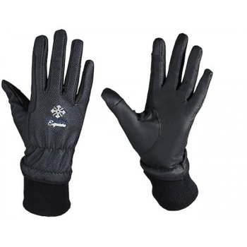 Handschoenen Nordic, met windstopper