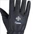 Handschoenen Nordic, met windstopper_